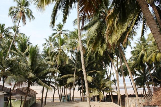 Beste Hotels Auf Goa